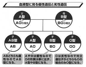 Key5Image1.jpg