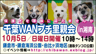 syonan_banner3_320x180.jpg