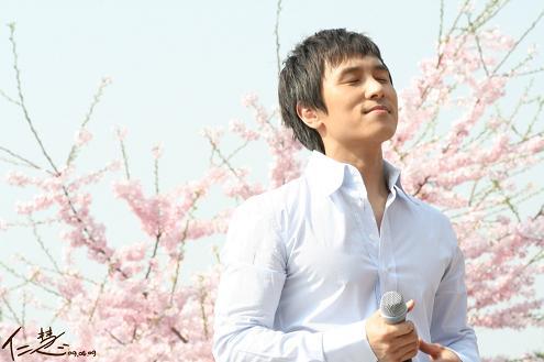 ドンワン桜