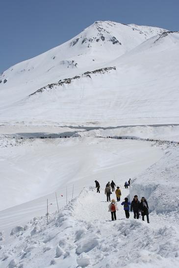 雪の大谷 パノラマロード