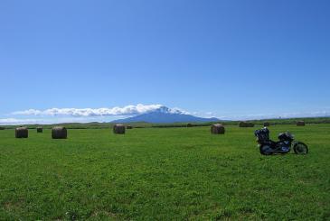 オロロンライン 緑の大地と牧草ロールあーんど利尻