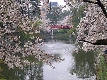 岡崎公園S