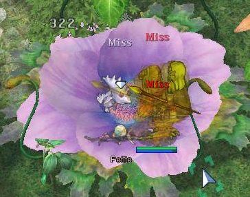 20070819_10.jpg