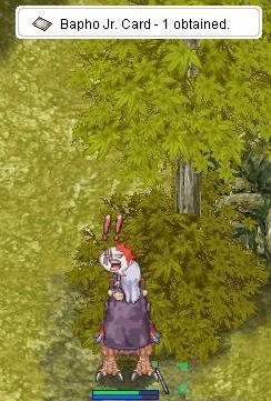 20080106_07.jpg
