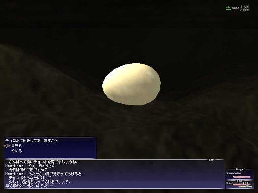 cyokobo7.jpg