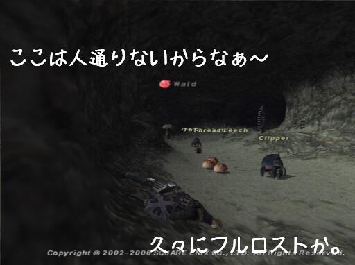kemono29.jpg