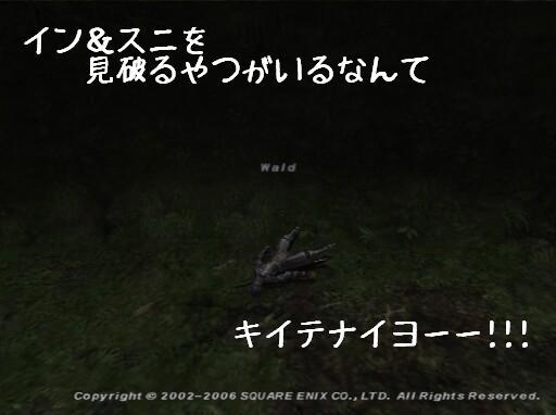 wa-pu1.jpg