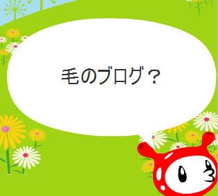 20051216100846.jpg