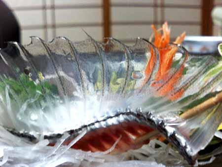 3太刀魚03.jpg