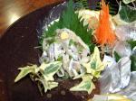 3太刀魚23.jpg