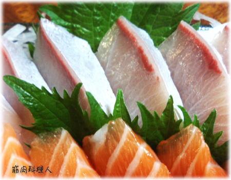 カンパチ・鮭.jpg