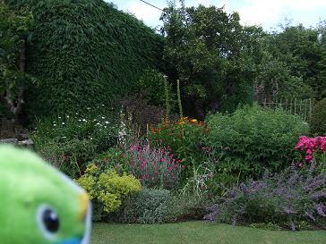 なんてきれいなお庭!