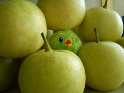 梨とぼく。