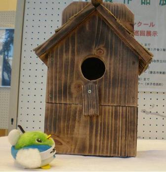 立派な巣箱だね!