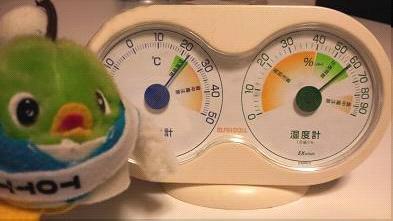 今朝は暖かかったなぁ~