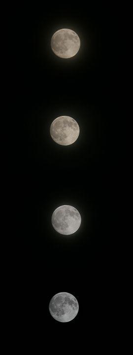 昨夜は中秋の名月