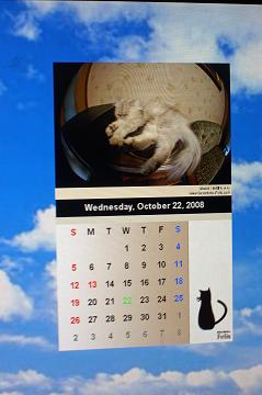 カレンダー(姉御)