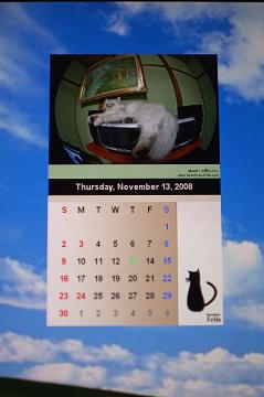 カレンダー(小春)