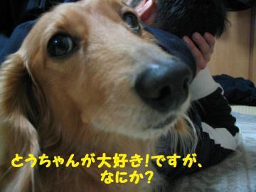 IMG_3364.jpg