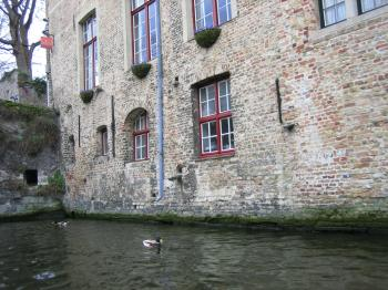 運河沿いの家