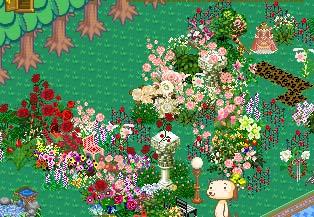 060127flower.jpg