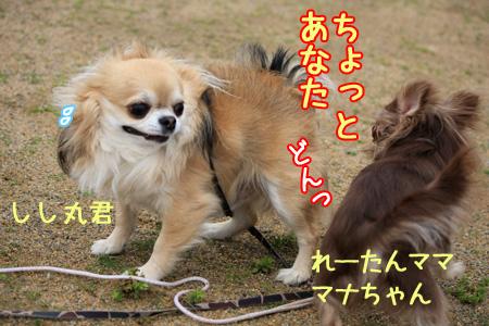 h200427_04.jpg