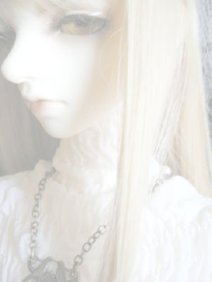 20091203.jpg