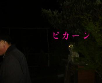 20070416232101.jpg
