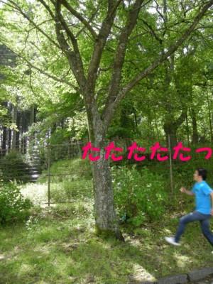 20070530205441.jpg