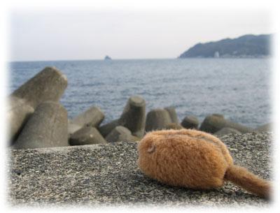 やっと海に着いた♪