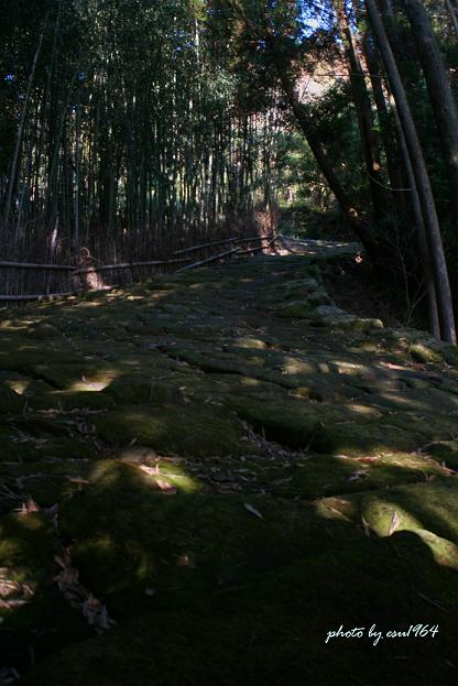 20080210 tatsumonjisaka-2