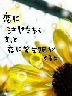 20061129233843.jpg