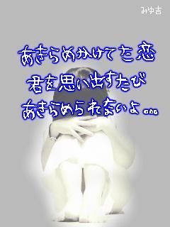 img_1138510_41058757_27.jpg
