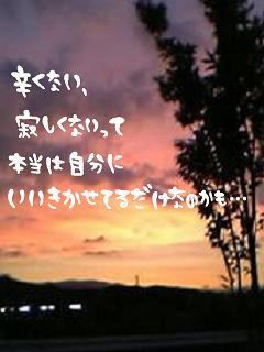 img_1203942_21045539_8.jpg