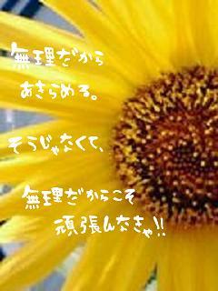 img_778017_6079645_1.jpg