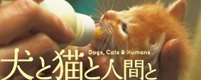 映画「犬と猫と人間と