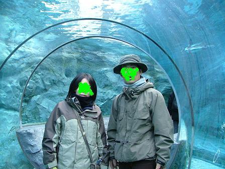 水中トンネル