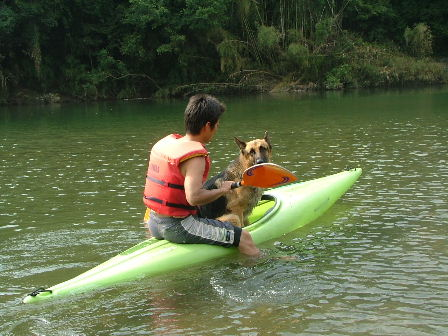 カヌー犬ボン