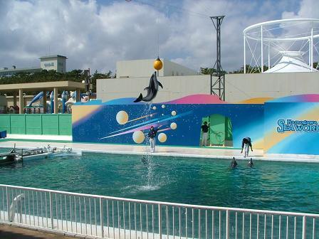 イルカのハイジャンプ