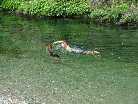 一緒に泳いでます