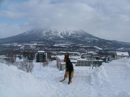 ニセコ、羊蹄山