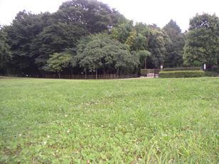 20070728-3