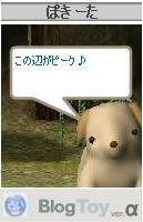 20060307200059.jpg