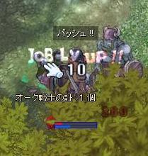 ae_job50_1.jpg