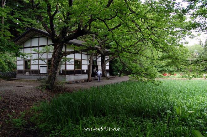 高村山荘2