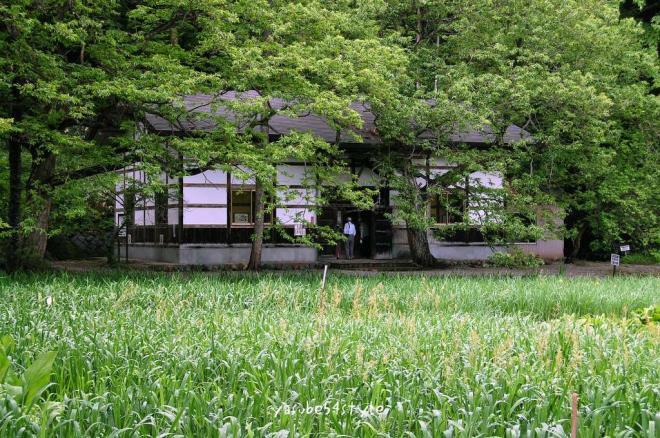 高村山荘3
