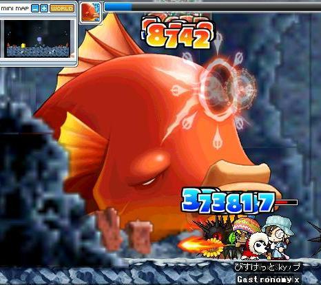 金魚( ゚゚)y-~~