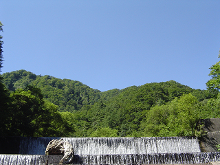 青い空と緑の森