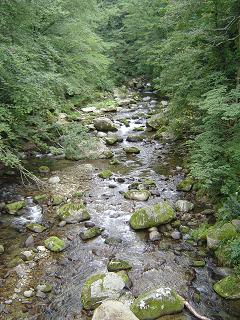 0909減水の流れ