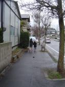 傘差して散歩